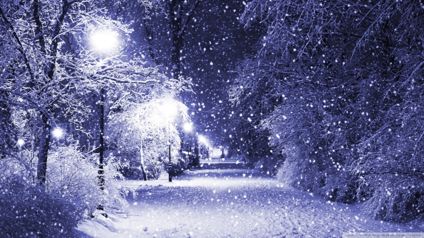 winter-night-nature-wallpaper-2