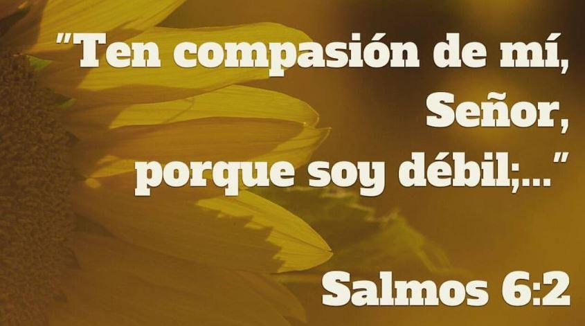 Salmo seis para curar enfermedades y vencer alenemigo.